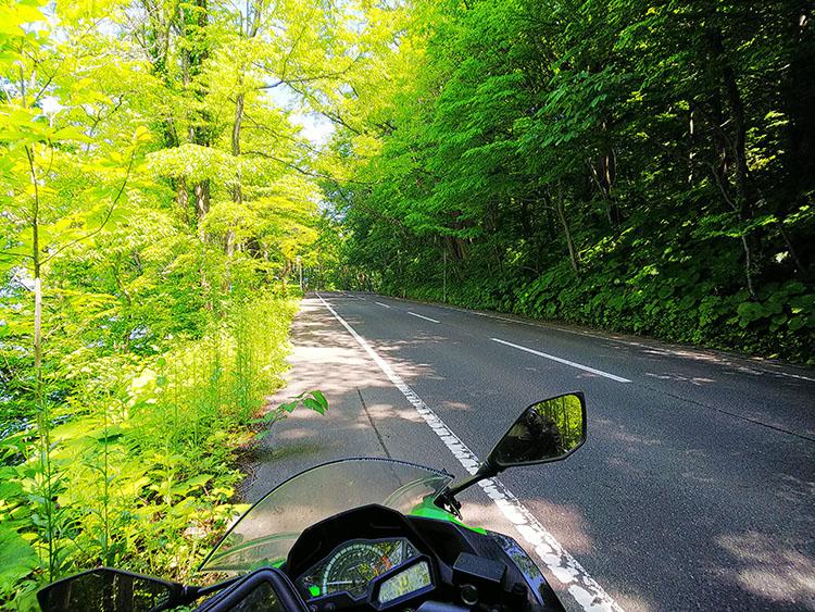 十和田湖 外周の道路 バイクからの景色